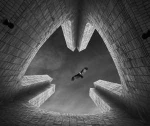 Raffles Photo Gold Medal - Rony Barua (Bangladesh)  Independent