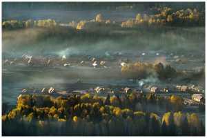 FIP Ribbon - Thomas Lang (USA)  Misty Dawn