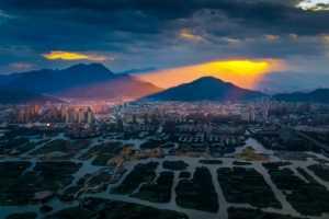PhotoVivo Gold Medal - Cheng Zhu (China)  That Sunglow