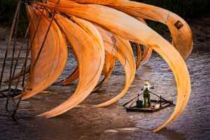PhotoVivo Gold Medal - Mingzai Su (China)  Fishing Jobs