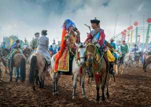 APU Honor Mention E-Certificate - Hong Zhao (China)  Love On Horseback