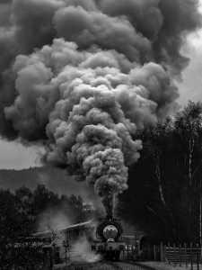 APU Gold Medal - Haider Chishty (England)  Smoke
