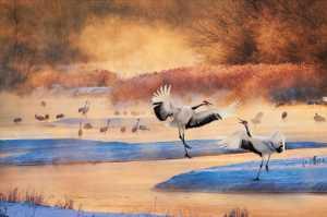 APU Gold Medal - Sally Leung (Hong Kong)  Dancing Cranes