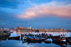 Circuit Merit Award e-certificate - Kaiying Yu (China)  Boats