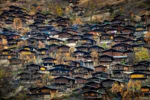 APU Gold Medal - Yonghuai Mao (China)  Old Village