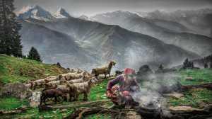 Raffles Photo Gold Medal - Kishore Ravikumar (India)  Himalayan Tribe
