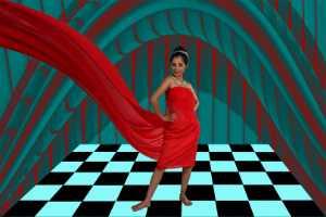 PhotoVivo Honor Mention e-certificate - Basudev Maity (India)  Alo In Redshari