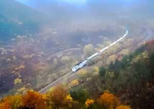 PhotoVivo Gold Medal - Ping Cao (China)  Train