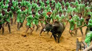 PhotoVivo Gold Medal - Udaya Thejaswi Urs (India)  Let Me Go