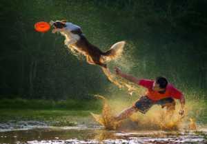 PhotoVivo Gold Medal - Arnaldo Paulo Che (Hong Kong)  Catch It 2