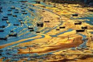 APAS Gold Medal - Tong Hu (China)  Twilight In Golden Bay