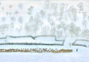 PhotoVivo Gold Medal - Zhizhou Jiang (China)  Northern Pastoral