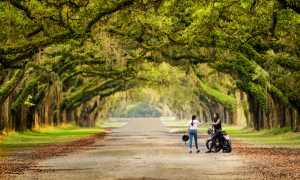 Circuit Merit Award e-certificate - Hendro Hioe (Indonesia)  Bikers At Savannah