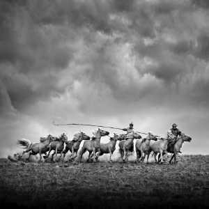 Circuit Merit Award e-certificate - Mingqing Yin (China)  Training Horse