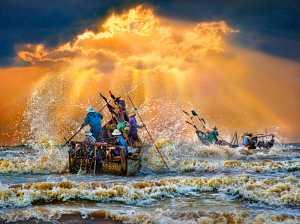 PhotoVivo Gold Medal - Tong Hu (China)  Canoeing