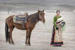 SIPC Merit Award - Tan Tong Toon (Malaysia)  Horse Lady