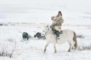 PhotoVivo Gold Medal - Dong Pan (China)  Pasture Snow