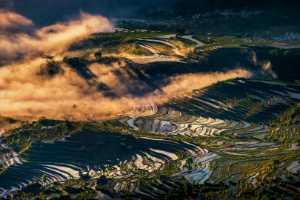 APAS Gold Medal - Chongfeng Wu (China)  Fairyland On Earth