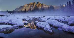 Circuit Merit Award e-certificate - Weiling Dai (China)  Snow Beauty