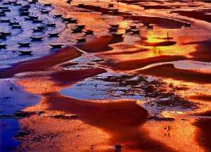 ICPE Gold Medal - Tong Hu (China)  Dram Beach