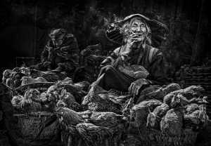 PhotoVivo Gold Medal - Arnaldo Paulo Che (Hong Kong)  Grandma And Her Chicken 2