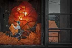 GTPC Merit e-certificate - Youzhen Wu (China)  Make Umbrellas