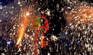 PhotoVivo Gold Medal - Hui Liu (China)  Fiery Dragon