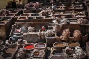 FIP Ribbon - Juat Eng Cham (Malaysia)  In A Tannery