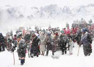 PhotoVivo Gold Medal - Yaojian Sheng (China)  Migrate In Snow