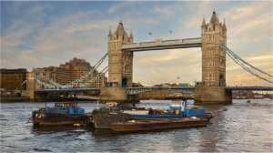 Circuit Merit Award e-certificate - David Wilson (South Africa)  Tower Bridge