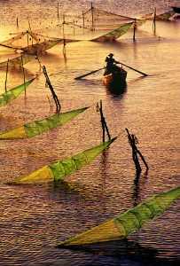 PhotoVivo Honor Mention e-certificate - Tong Hu (China)  Gold River