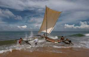 PhotoVivo Gold Medal - Pandula Bandara (Sri Lanka)  Into The Sea 3