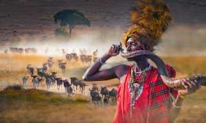 PhotoVivo Gold Medal - Chan Ieong Tam (Macau)  Masai Mara12