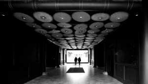 PhotoVivo Gold Medal - Xincai Pan (China)  Shadow