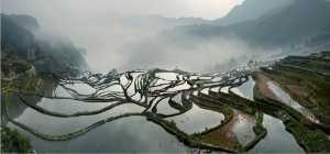 PhotoVivo Gold Medal - Daming Liang (China)  Yuanyang Terrace