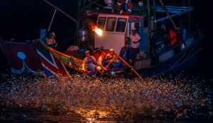Circuit Merit E-cert - Chin-Shuang Huang (Taiwan)  Fishing
