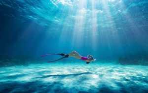 ICPE Honor Mention e-certificate - Hongjun Yue (China)  Beauty Under The Sea 22