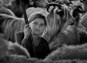 APU Gold Medal - Istvan Kerekes (Hungary)  Shepherd Girl