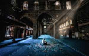 Raffles Merit Award E-Certificate - Babak Mehrafshar (Iran)  Prayer And Mosque