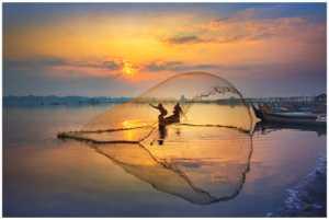 ICPE Honor Mention e-certificate - Yan Wong (China)  Catch Fish