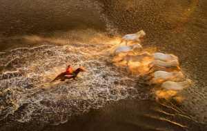 APU Gold Medal - Junmin Li (China)  Galloping