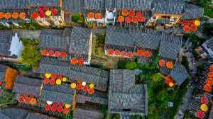 PhotoVivo Gold Medal - Aizhen Jiang (China)  Mountain Village In Autumn
