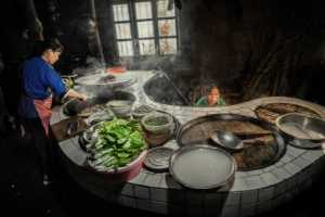 PhotoVivo Gold Medal - Ying Shen (China)  Cook