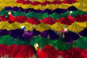 PhotoVivo Gold Medal - Le Chau Dao (Vietnam)  Jasamne 9
