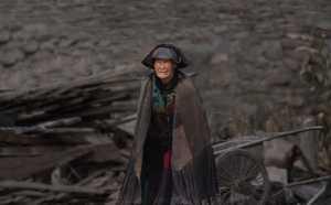 PhotoVivo Gold Medal - Yichi Wang (China)  Guard The Site