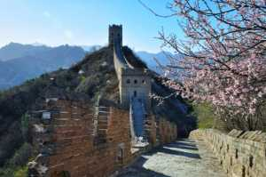 PhotoVivo Gold Medal - Dianping Chen (China)  Spring Come To The Great Wall