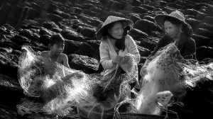 PhotoVivo Gold Medal - Liuxue Xie (Taiwan)  Catching Net