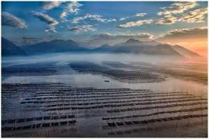 ICPE Honor Mention e-certificate - Thomas Lang (USA)  Xiapu Morning Light