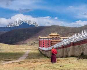 PhotoVivo Honor Mention e-certificate - Qun Gu (China)  Lonely Trip