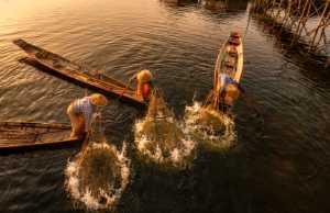 PhotoVivo Gold Medal - Jing Li (China)  Fishing Life